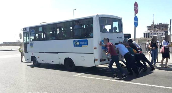 İctimai nəqliyyat, avtobus