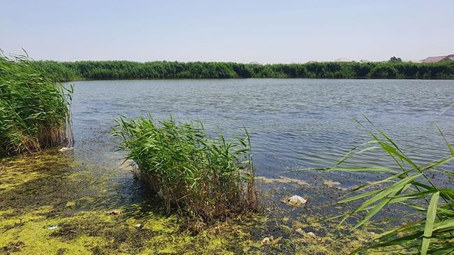 Qəbiristanlıqda göl