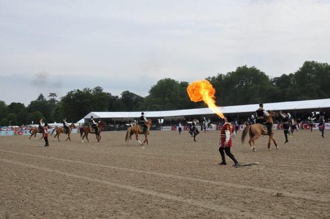 DSX Süvari dəstəsinin təqdimatında Qarabağ atları