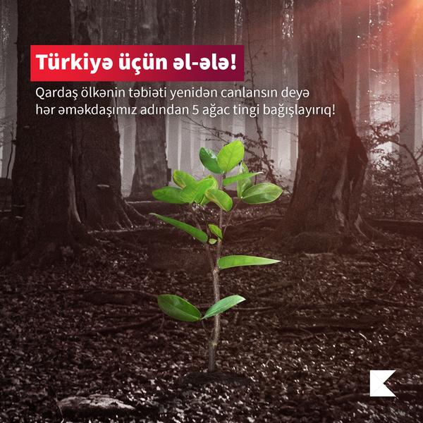 Kapital Bank meşələrin bərpası üçün Türkiyəyə dəstək göstərdi